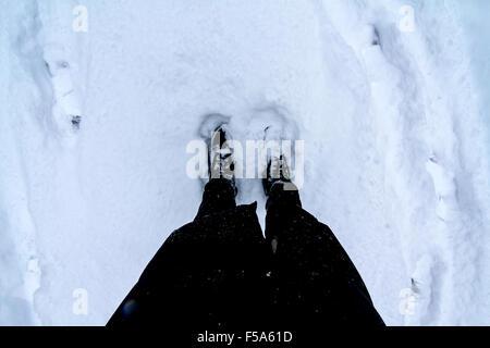 Standing in the snowy floor - Stock Image