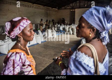 Female rice traders buy rice from a mill in Sierra Leone. - Stock Image