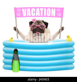 happy summer pug dog with sunglasses and pink banner sign with text vacation  in inflatable pool, isolated on white - Stock Image