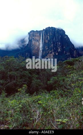 Angel Falls Venezuela - Stock Image