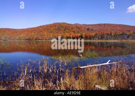 Fall foliage on Long Lake Vermont - Stock Image