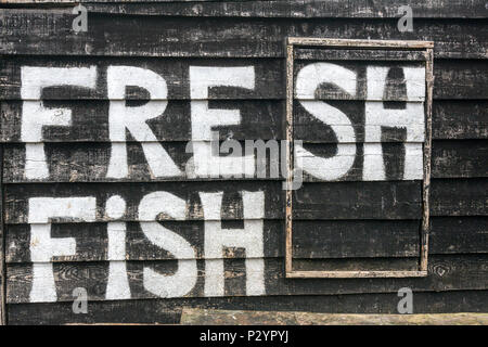 Fresh Fish painted in the Hastings Net Shops, Fisherman black wooden huts at Hastings at Hastings, East Sussex, England , UK - Stock Image