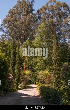 Alfred Nicholas Memorial Gardens, Sherbrooke, Victoria, Australia - Stock Image