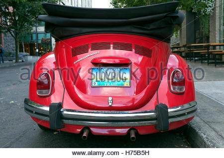 Rear view of a Volkswagen Beetle convertible, with a licence plate reading LDYBUG. Photographed in Portland, Oregon, - Stock Image