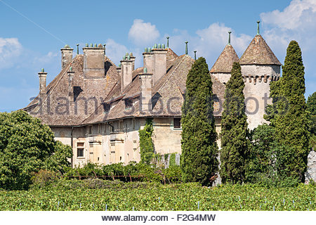 Ripaille castle and vineyard in Thonon-les-Bains (France) - Stock Image