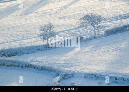 Snow covered farmland showing fields, hedges trees and a gate in Danby Dale in North York Moors National Park - Stock Image