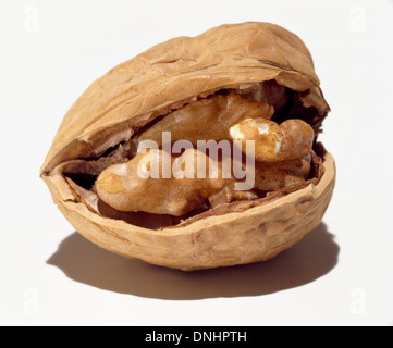 A half opened walnut and shell on a white background. - Stock Image