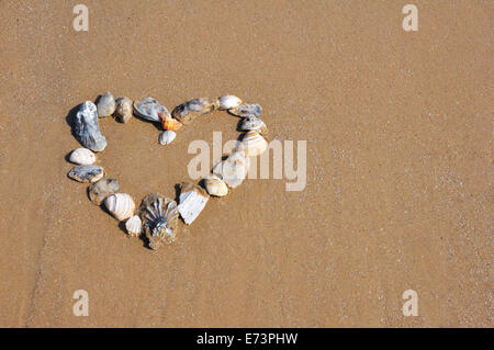 Heart made of shells on beach sand - Stock Image