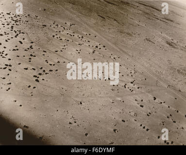 1939 Africa Corps abandoned vehicles left in the desert after they ran out of fuel - Stock Image