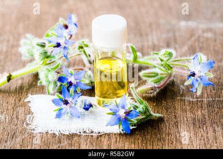 Essential oil of borage (Borago officinalis). - Stock Image