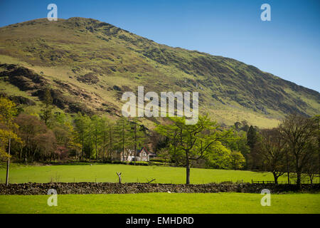 UK, Wales, Gwynedd, Welsh Mountain Railway, Snowdonia, view of Foel Gron from the train - Stock Image