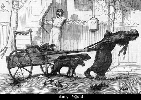 A New York rag collector collects rags with the help of the two dogs which are harnessed to her handcart      Date: 1870 - Stock Image