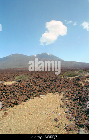A View of the Volcanic Mountain Mt Teide, Tenerife National Park, Canary Islands - Stock Image