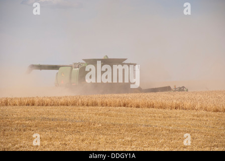 Dust and chaff fill the air at the barley harvest near Spokane, Washington State, USA. - Stock Image