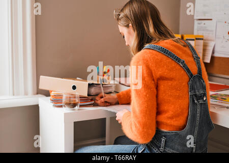 Young female college student studying at desk - Stock Image