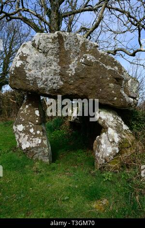 The Hanging Stone Neolithic chambered tomb  with large capstone Sardis Llangwm Pembrokeshire Wales Cymru UK - Stock Image