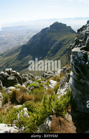 A View from Table Mountain, Cape Town, Western Cape, South Africa. - Stock Image