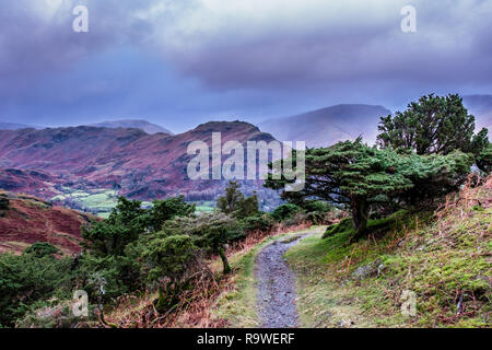 Helm Crag and Great Rigg, seen from the lower flanks of Silver How, near  Grasmere, Lake District, Cumbria - Stock Image