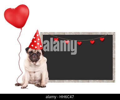 cute pug puppy dog with red party hat, sitting next to blank blackboard sign and holding heart shaped balloon, isolated - Stock Image