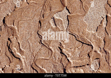 An abstract pattern left in the sand as water drains away after the tide goes out. - Stock Image