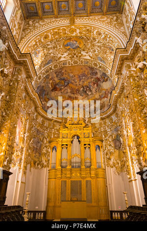 Italy Sicily Agrigento old town Cathedral Duomo Cattedrale Museo Diocesano Church religion Christian Catholic main apse organ pipes ornate ceiling - Stock Image