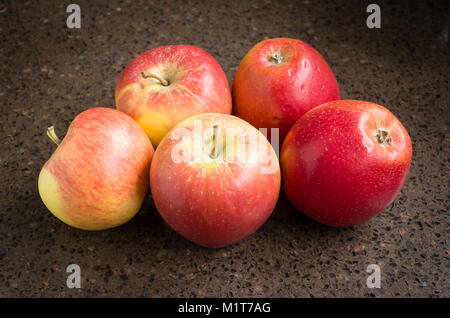 Selection of shop-bought Kansi apples variety Nicoter characterised by coloour, taste and crispness - Stock Image