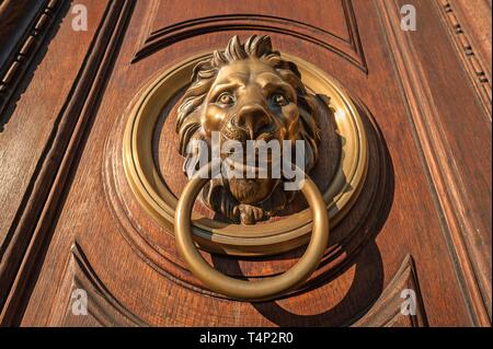 Lion's head as door knocker on old wooden door, 1815, Italian Embassy, Vienna, Austria - Stock Image