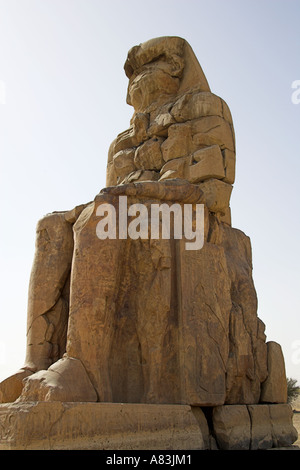 Colossus of Memnon Luxor Thebes Egypt Africa - Stock Image