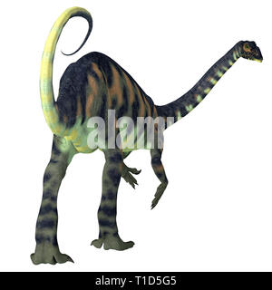 Massospondylus was a herbivorous prosauropod dinosaur that lived in South Africa during the Jurassic Period. - Stock Image