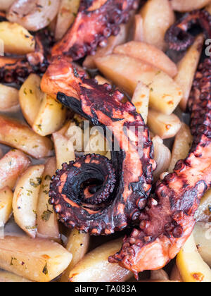 Roasted octopus with potatoes in tray - Stock Image