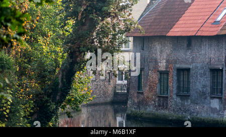 Sunlit trees foreground ancient bricked Bruges homes on the famous waterway canal system - Stock Image