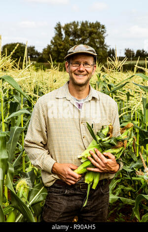 Smiling farmer standing in a corn field, holding bunch of maize cobs. - Stock Image