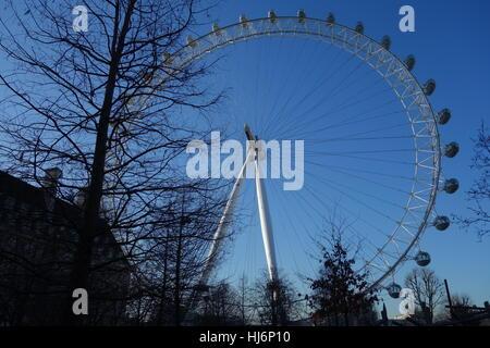 The Coca-Cola London Eye, Jubilee Gardens, London, UK - Stock Image