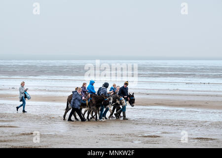 A group of children enjoying a traditional seaside donkey ride along the beach on a cold wet spring day at weston-s-mare england - Stock Image