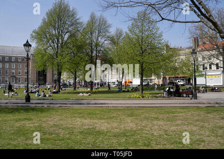College Green in the centre of Bristol, England UK - Stock Image