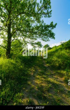 Sevier County Countryside viewed from Red Bank Road, Tennessee - Stock Image