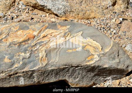 metamorphic rock, Palm Canyon Trail, Anza-Borrego Desert State Park, CA 110814_70482 - Stock Image