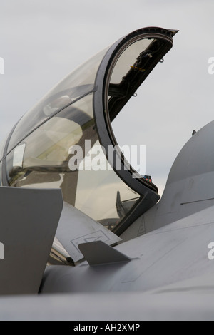 Czech Saab JAS39D Gripen cockpit photographed at Brno - Turany 2007 during airshow - Stock Image