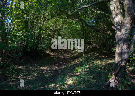 Ancient trackways and footpaths. Herefordshire UK 2018 Near Longtown - Stock Image