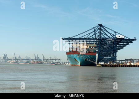 Port of Felixstowe Suffolk England - Stock Image