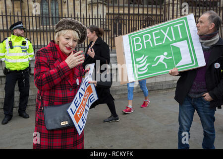 On the day that Prime Minister Theresa May's Meaningful Brexit vote is taken in the UK Parliament, a Leave supporter and a Green Party voter protest outside the House of Commons, on 15th January 2019, in Westminster, London, England. - Stock Image