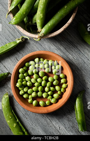high angle view of some raw fresh green peas in an earthenware plate and some pea pods on a gray rustic wooden table - Stock Image