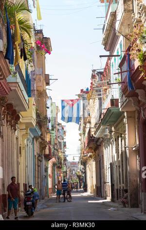 Cuba, Havana. Backlit Cuban flag hanging over street. Credit as: Wendy Kaveney / Jaynes Gallery / DanitaDelimont.com - Stock Image