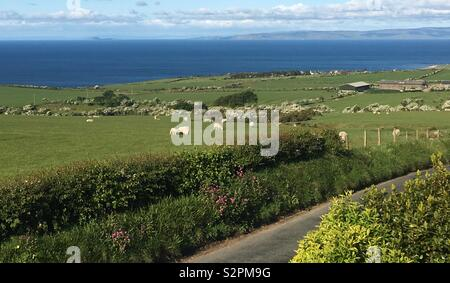 Arran countryside with the sea in the background - Stock Image