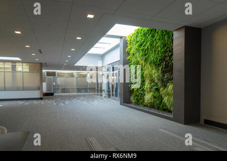 Large Modern Hallway In Commercial Office Building - Stock Image