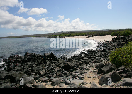 Punta Suarez Beach, Espanola Island, Galapagos Islands, Ecuador, South America - Stock Image