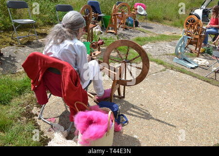 The Sheep to Shawl Challenge taking place at Orford Ness, Suffolk, UK - Stock Image