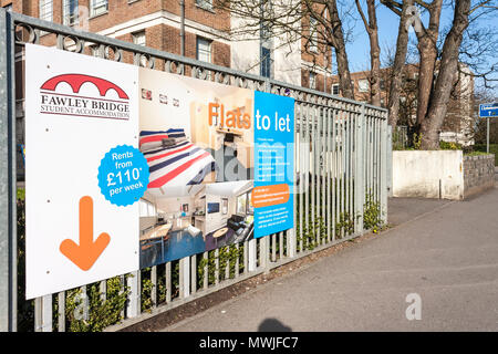 Sign for student college and university accommodation rooms to let in town centre building, Reading, Berkshire, England, GB, UK - Stock Image