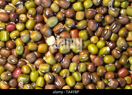 Green split peas seen from above - Stock Image