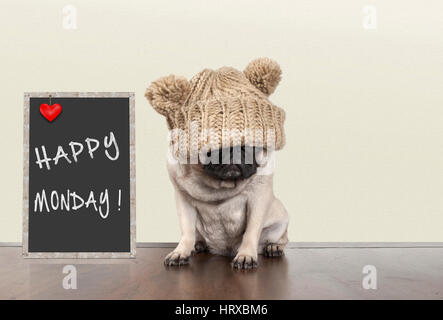 cute pug puppy dog with bad monday morning mood, sitting next to blackboard sign with text happy monday, copy space - Stock Image